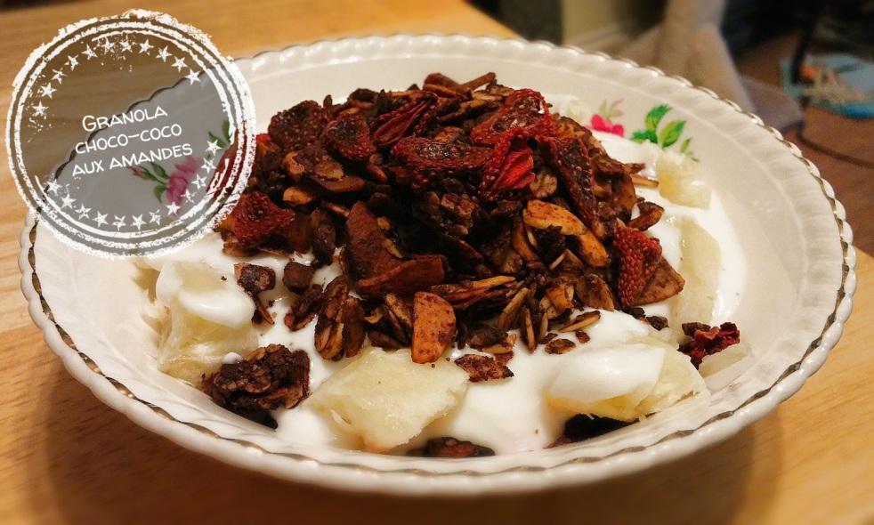 Granola choco-coco aux amandes
